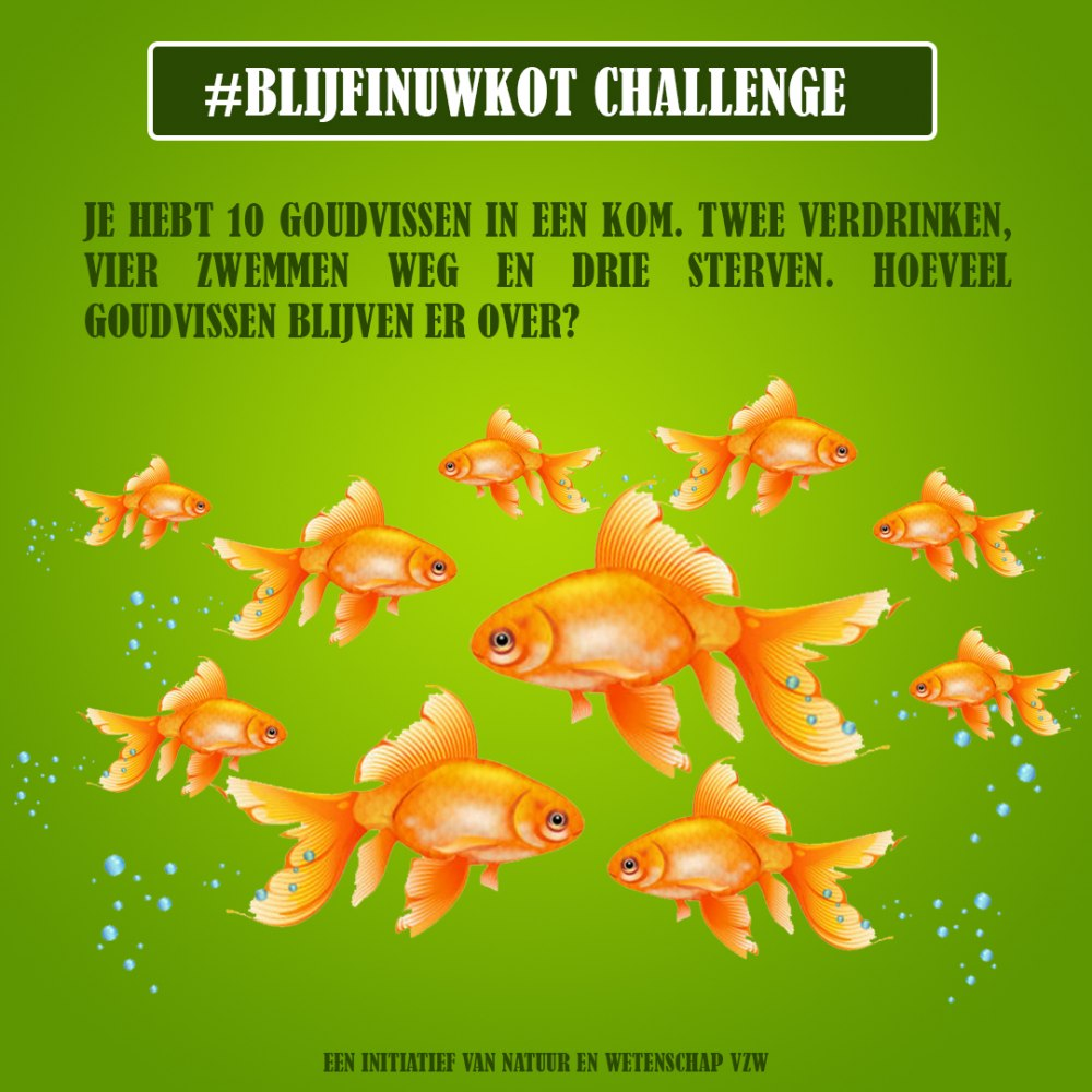 challenges 12 april