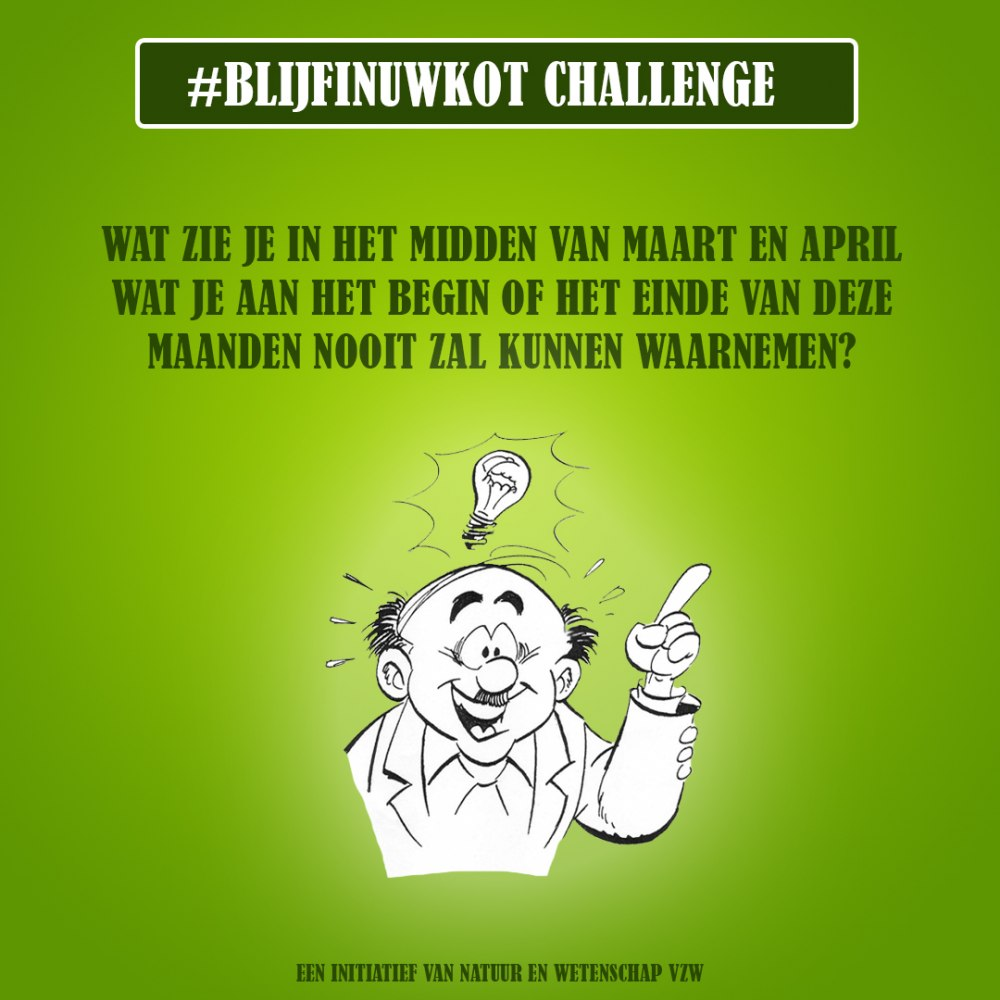 challenge 10 juni
